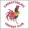 Croesyceiliog Cricket Club Shop